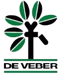 deVeber Institute Mobile Logo