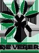 deVeber Institute Logo
